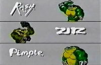 Battletoads mini1